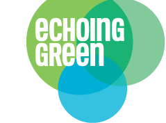 Apply: 2014 Echoing Green Global Fellowship