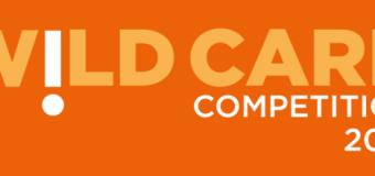 Schmidt-MacArthur Fellowship Wild Card Competition 2014