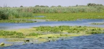 The Ramsar Wetland 2015 Conservation Awards Worth US$10,000
