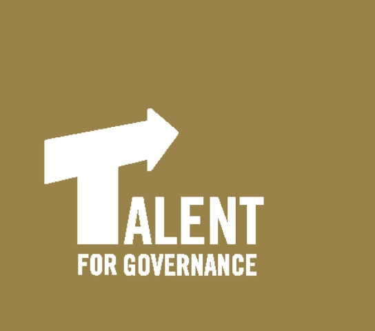 Hague Academy for Local Governance Talent Programme 2014 – The Netherlands