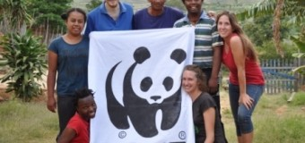 WWF Global Youth Volunteer & Internship Programme