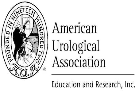 2015 Urology Care Foundation Research Scholars Program