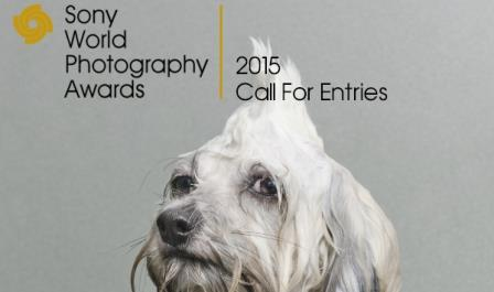 Sony 2015 World Photography Award – London, UK
