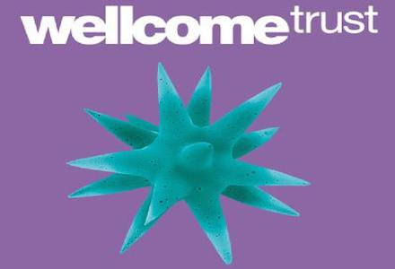 Wellcome Trust Master's Fellowship in Public Health and Tropical Medicine
