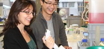 Friedrich Miescher Institute International PhD Program – University of Basel, Switzerland
