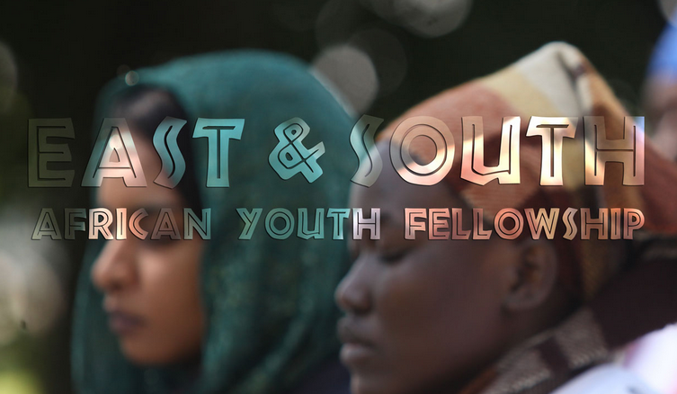 Peace Revolution East/South African Youth Fellowship 2015 – Gaborone, Botswana