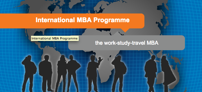 International MBA Scholarship Opportunities with Business School Netherlands