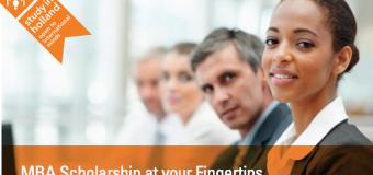Netherlands Fellowship Programme – MBA Scholarship 2015