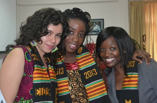 MILEAD Fellowship Program for Young African Women 2015