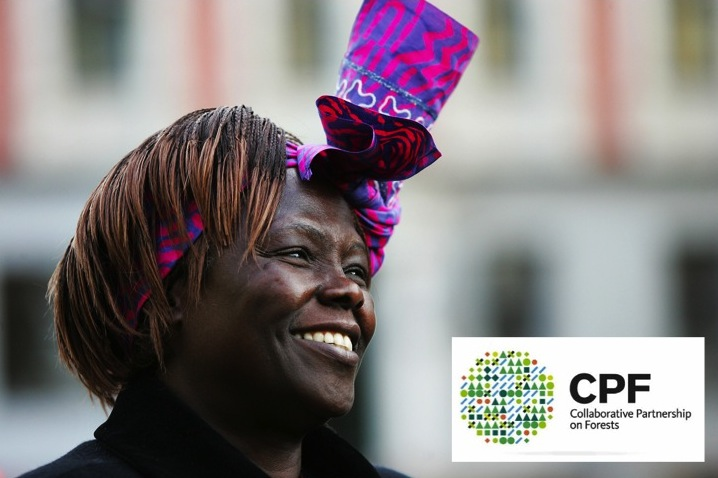 CPF Wangari Maathai Forest Champions Award 2015 ($20,000 and Invitation to Durban)