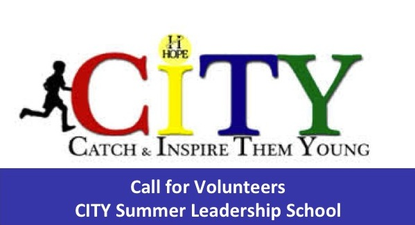 Call for Volunteers for the 2015 CITY Summer Leadership School across Nigeria