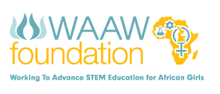 2016 WAAW Foundation Scholarships For African Women
