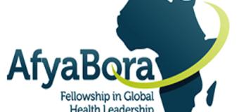 The Afya Bora Fellowship in Global Health Leadership 2016-17 (Funded)