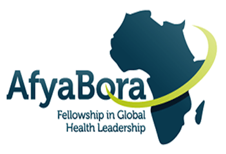 The Afya Bora Fellowship in Global Health Leadership 2016-17 (Funded)