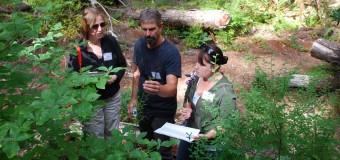 2016 World Forest Institute International Fellowship