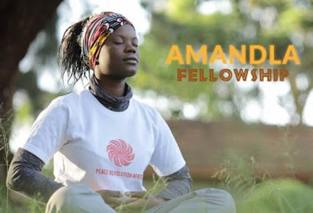 Call For Applications: Amandla East and Southern Africa Fellowship