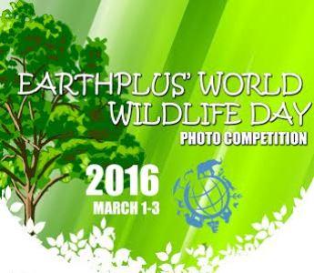 Earthplus' World Wildlife Photo Competition (Nigeria)