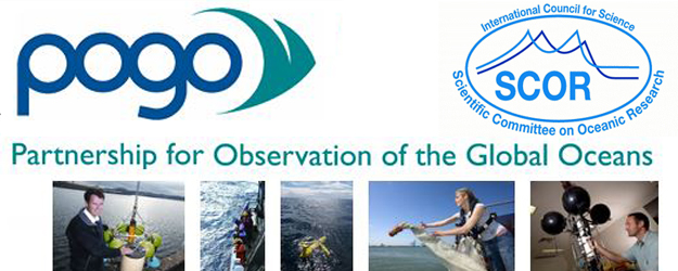 POGO-SCOR Visiting Fellowships for Oceanographic Observations