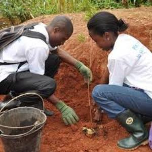 Congo Basin Grant Program For African Graduate Students (USD $5000  Grant)