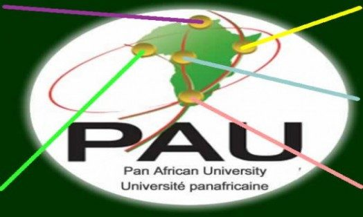 pan african university scholarship for 2016  17 academic