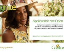 Ignite Agribusiness Programme 2016