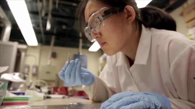 CRDF Global – QNRF Women in Science Fellowship 2017
