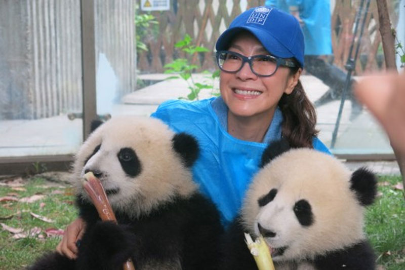 UNDP #Pandas4GlobalGoals Contest – Win a Trip to China!