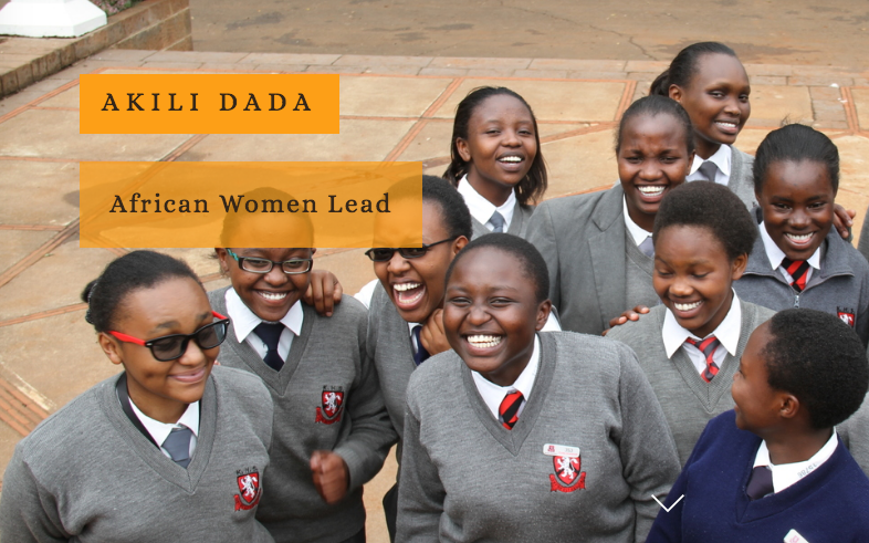 Akili Dada Fellowship Program for Young African Women 2017