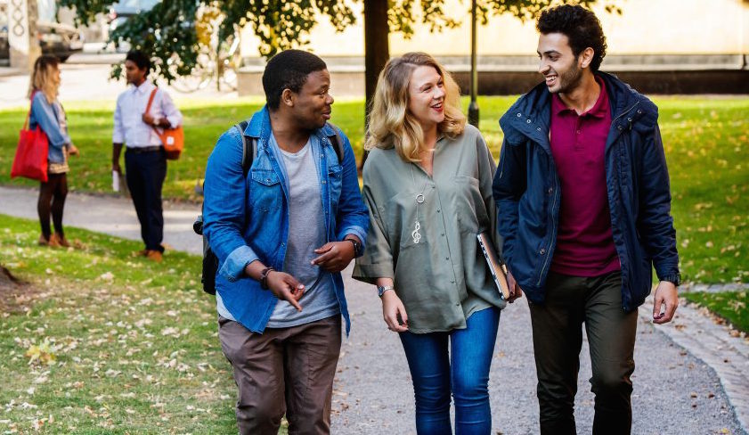 Applications Open: Swedish Institute Study Scholarships 2017-18 (335 scholarships to study in Sweden)