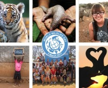 """Through Young Eyes"" Photo Competition for UN World Wildlife Day 2017"