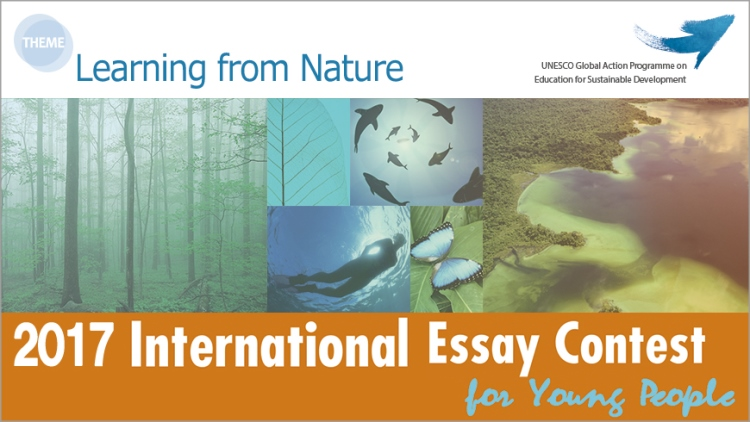 goi peace international essay contest 2012 The goi peace foundation and unesco are pleased to announce the the international essay contest for young people from all over the world this annual essay.