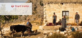 Robert Bosch Stiftung Film Prizes for International Cooperation