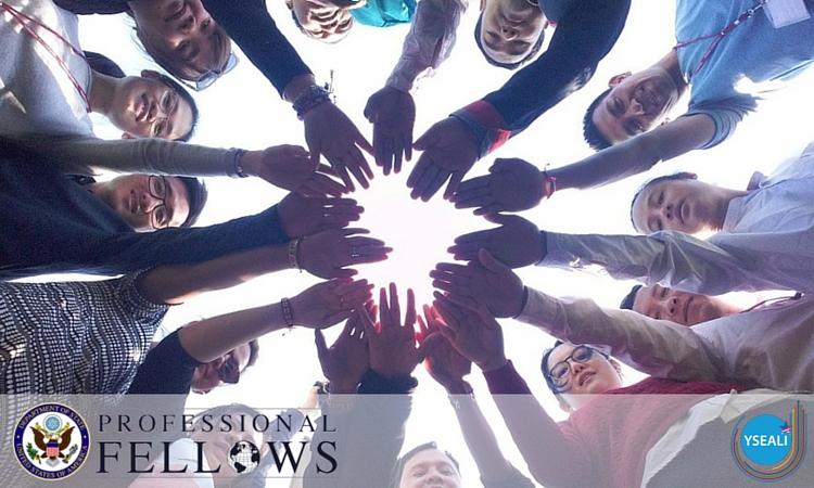 YSEALI Professional Fellows Program 2017