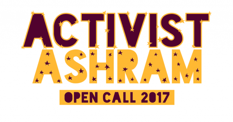 Apply for the Activist Ashram 2017