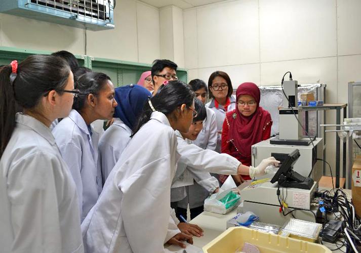 IMS International Internship Program in Asia 2017
