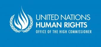 UN OHCHR Indigenous Fellowship Programme 2018