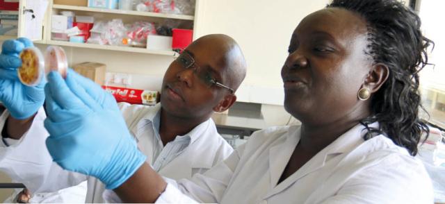 Africa Biosciences Challenge Fund Fellowship 2017/18