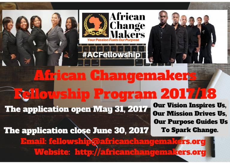 African Changemakers Fellowship Program 2017/18