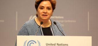 Associate Programme Management Officer Job at UNFCCC