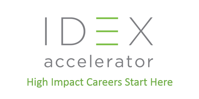 IDEX Global Fellows Program in India 2018 (Scholarships Available)
