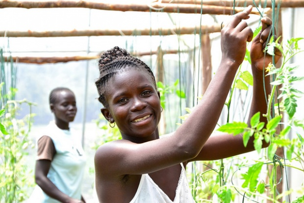 Africa Youth in Agribusiness Day Challenge 2017 (Win Fully-Sponsored Trip to Incubators in Africa, Asia and Europe)