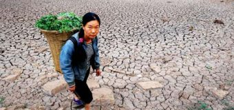 AIMS NEI Fellowship Program for Women in Climate Change Science 2019 (USD $35,000)