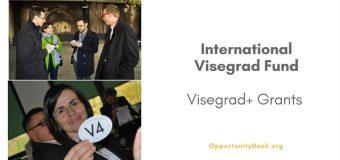 International Visegrad Fund: 2017 Visegrad+ Grants Programme