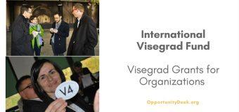 International Visegrad Fund: 2017 Visegrad Grants for Organizations Worldwide