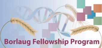 Borlaug Global Research Alliance Fellowships 2019