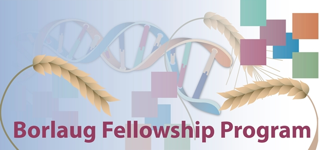 Borlaug International Agricultural Science and Technology Fellowship Program 2019