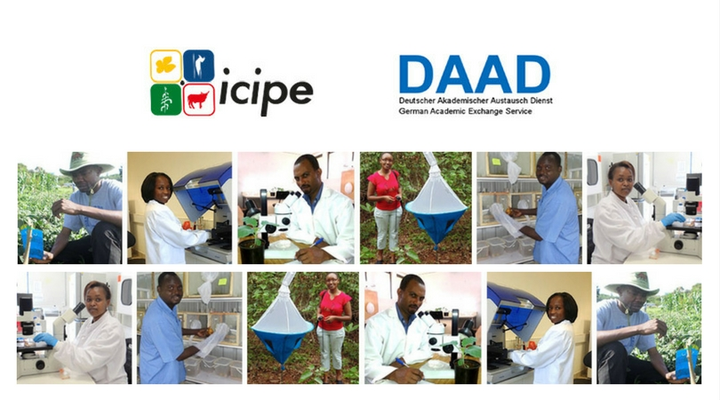 ARPPIS-DAAD PhD Scholarships 2020 to Study at the International Centre of Insect Physiology and Ecology (icipe), Kenya