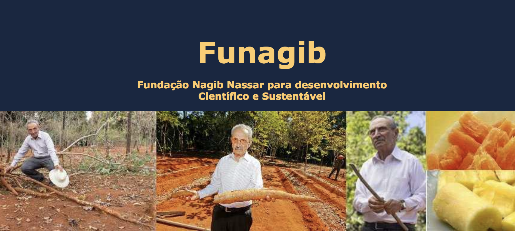 2018 FUNAGIB Research Scholarship for African Students working on Cassava (Fully-funded to Brazil)