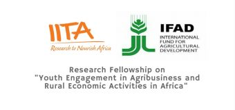 """IITA Research Fellowship 2019 on """"Youth Engagement in Agribusiness and Rural Economic Activities in Africa"""" (Up to $10,000 Grant)"""