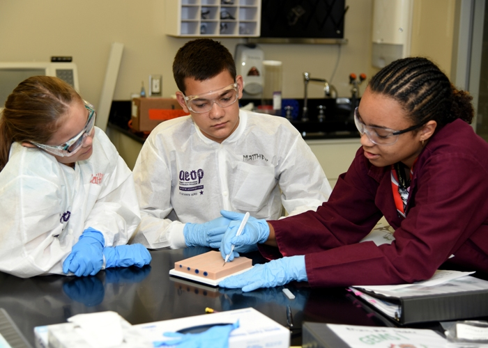 AEOP Summer STEM Apprenticeships 2018 for Students in the US (Stipend Available)